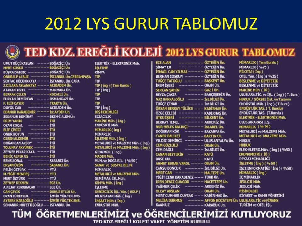 2012 LYS GURUR TABLOMUZ