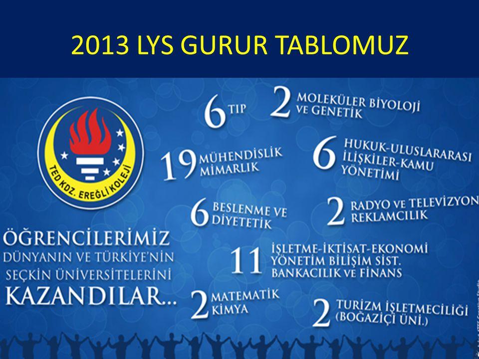 2013 LYS GURUR TABLOMUZ