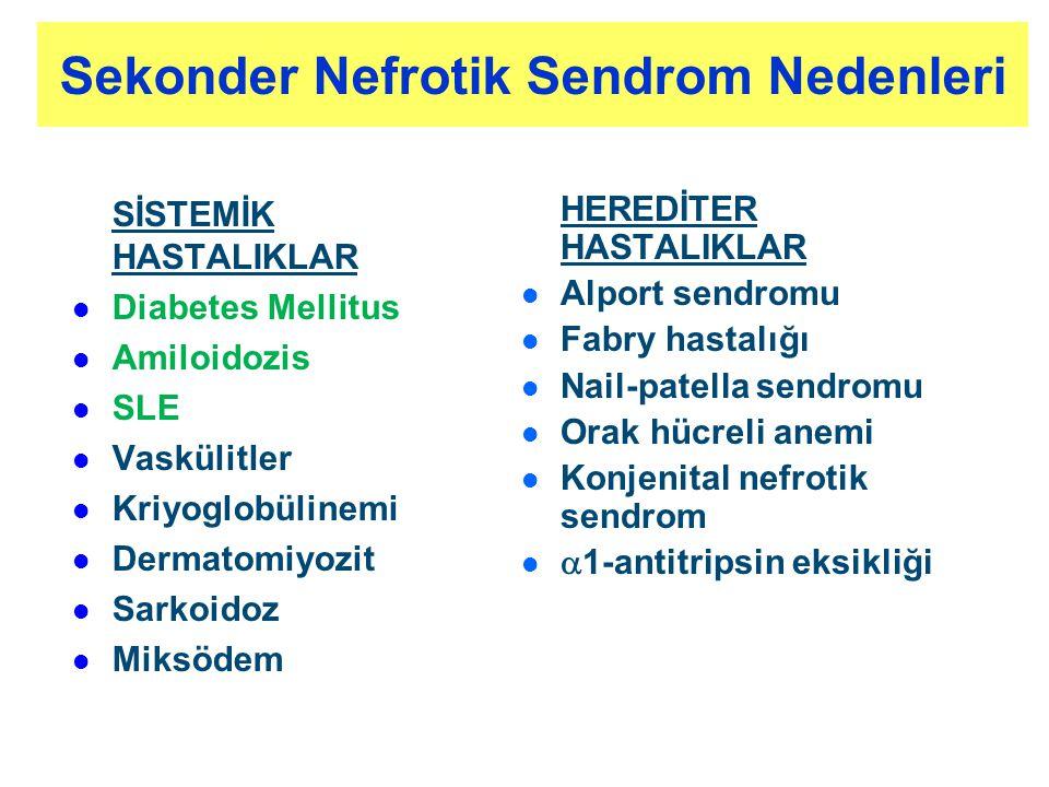 Sekonder Nefrotik Sendrom Nedenleri