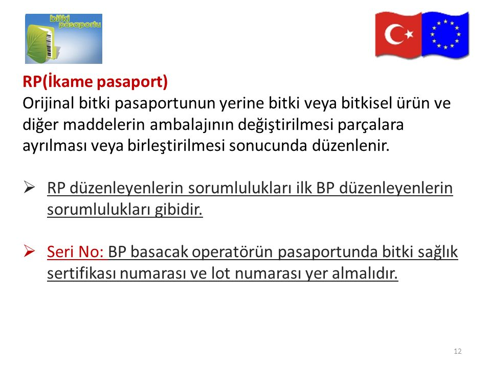 RP(İkame pasaport)