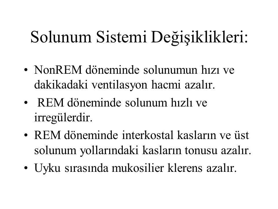 Solunum Sistemi Değişiklikleri: