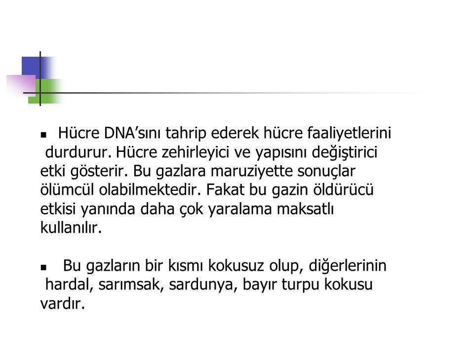 Hücre DNA'sını tahrip ederek hücre faaliyetlerini