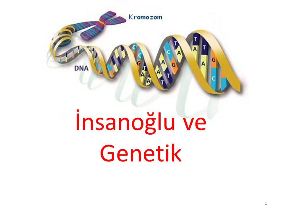 İnsanoğlu ve Genetik