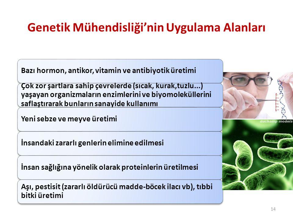 Genetik Mühendisliği'nin Uygulama Alanları