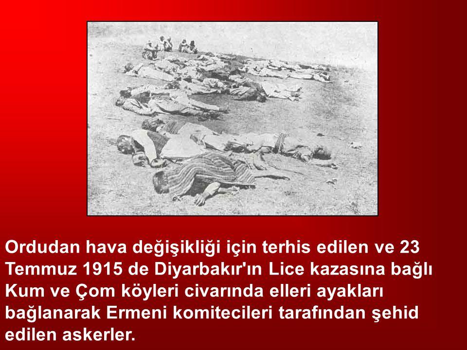 Ordudan hava değişikliği için terhis edilen ve 23 Temmuz 1915 de Diyarbakır ın Lice kazasına bağlı Kum ve Çom köyleri civarında elleri ayakları bağlanarak Ermeni komitecileri tarafından şehid edilen askerler.