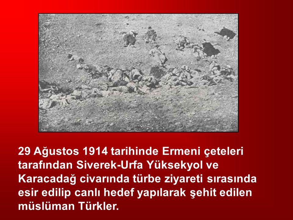 29 Ağustos 1914 tarihinde Ermeni çeteleri tarafından Siverek-Urfa Yüksekyol ve Karacadağ civarında türbe ziyareti sırasında esir edilip canlı hedef yapılarak şehit edilen müslüman Türkler.