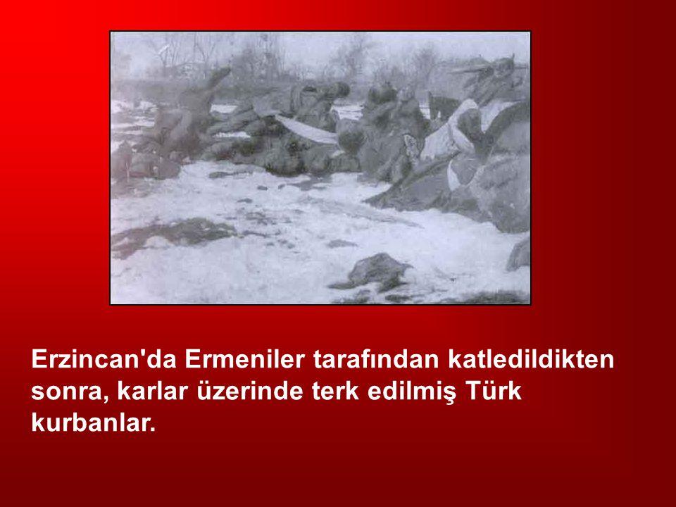 Erzincan da Ermeniler tarafından katledildikten sonra, karlar üzerinde terk edilmiş Türk kurbanlar.