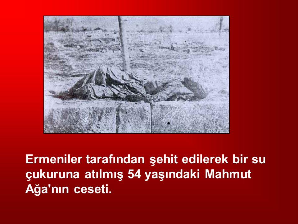 Ermeniler tarafından şehit edilerek bir su çukuruna atılmış 54 yaşındaki Mahmut Ağa nın ceseti.
