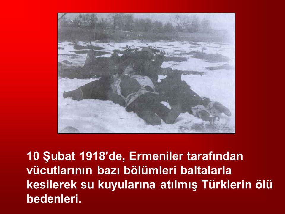 10 Şubat 1918 de, Ermeniler tarafından vücutlarının bazı bölümleri baltalarla kesilerek su kuyularına atılmış Türklerin ölü bedenleri.