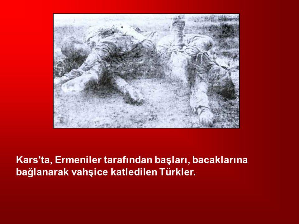 Kars ta, Ermeniler tarafından başları, bacaklarına bağlanarak vahşice katledilen Türkler.