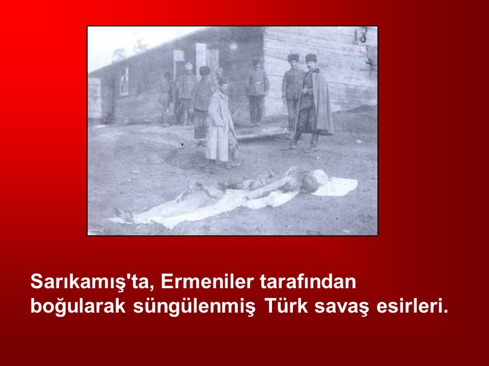 Sarıkamış ta, Ermeniler tarafından boğularak süngülenmiş Türk savaş esirleri.