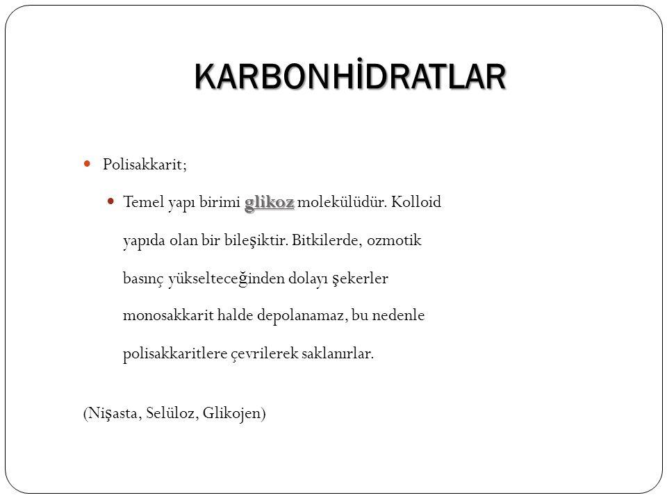 KARBONHİDRATLAR Polisakkarit;