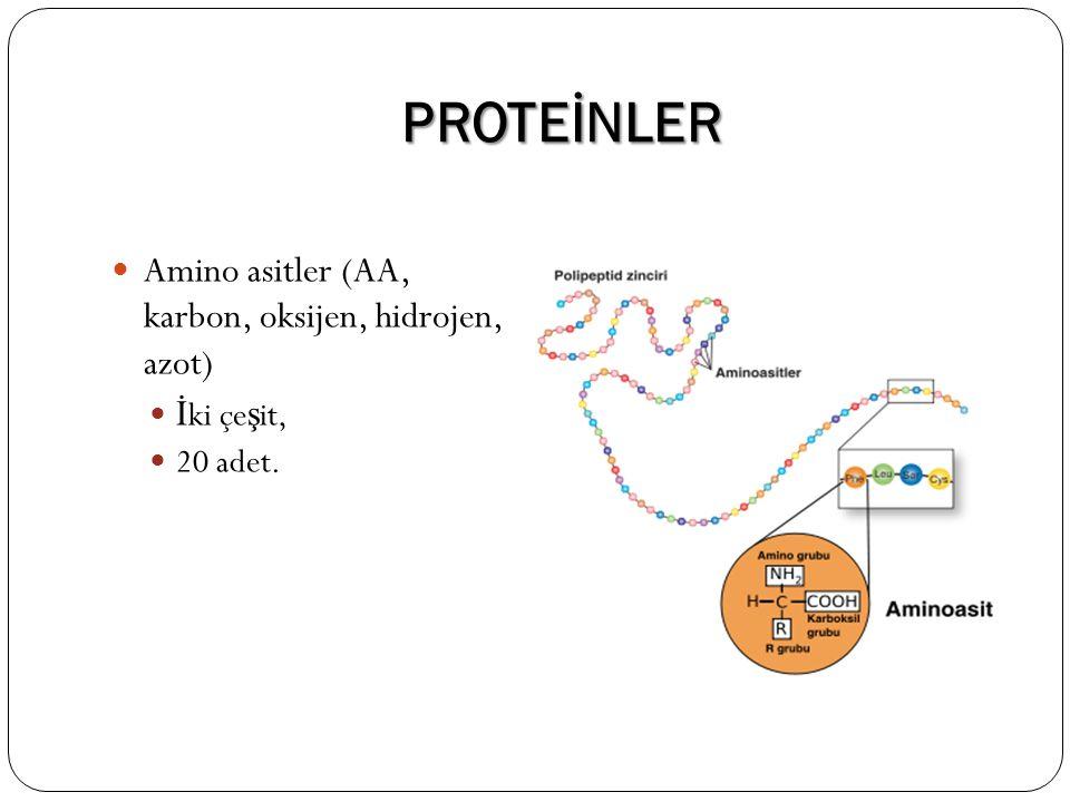 PROTEİNLER Amino asitler (AA, karbon, oksijen, hidrojen, azot)