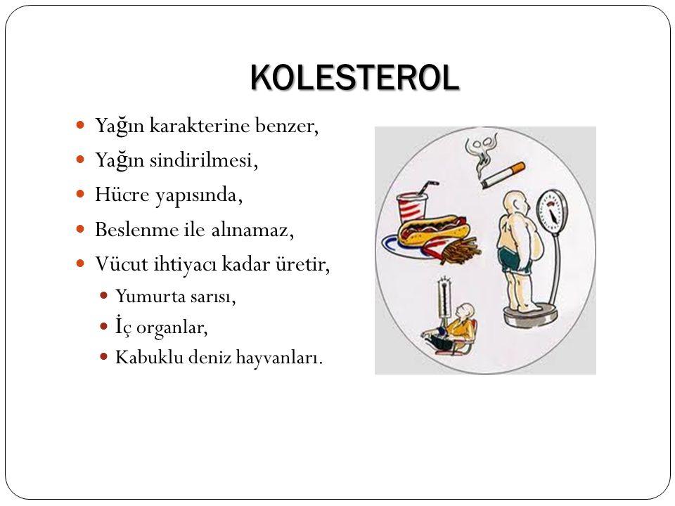 KOLESTEROL Yağın karakterine benzer, Yağın sindirilmesi,
