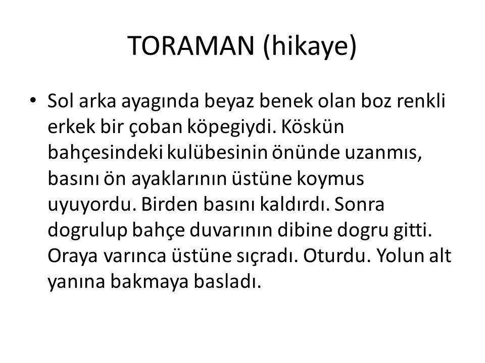 TORAMAN (hikaye)