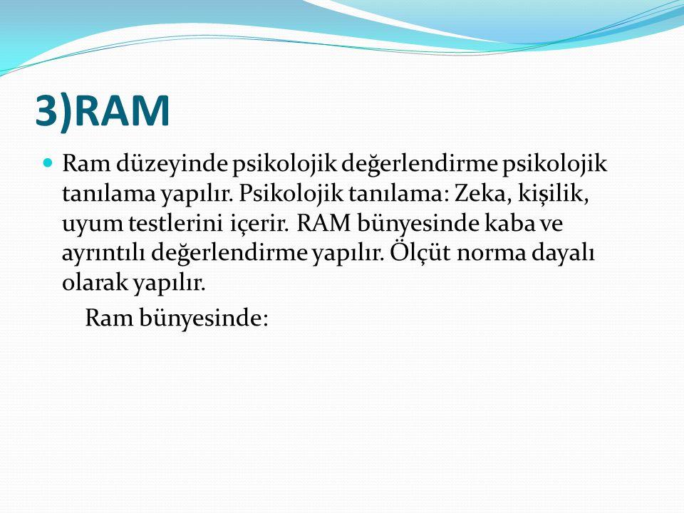 3)RAM