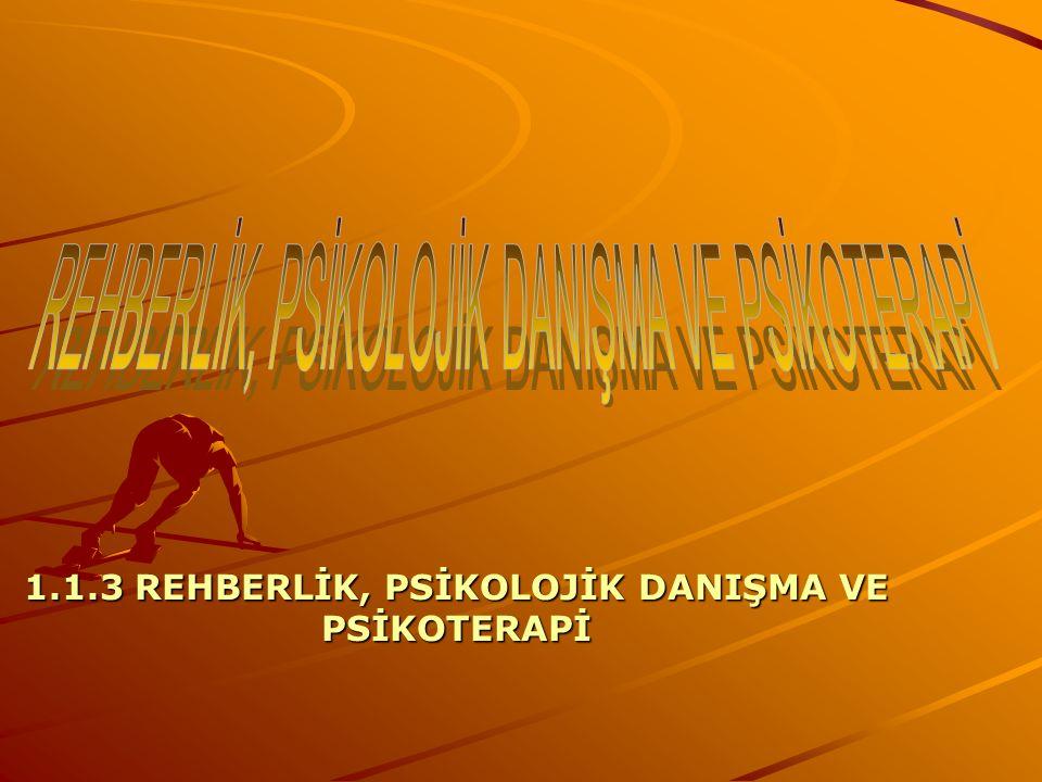 1.1.3 REHBERLİK, PSİKOLOJİK DANIŞMA VE PSİKOTERAPİ