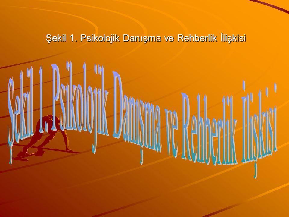 Şekil 1. Psikolojik Danışma ve Rehberlik İlişkisi
