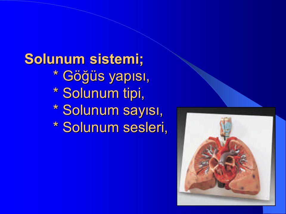 Solunum sistemi;. Göğüs yapısı,. Solunum tipi,. Solunum sayısı,