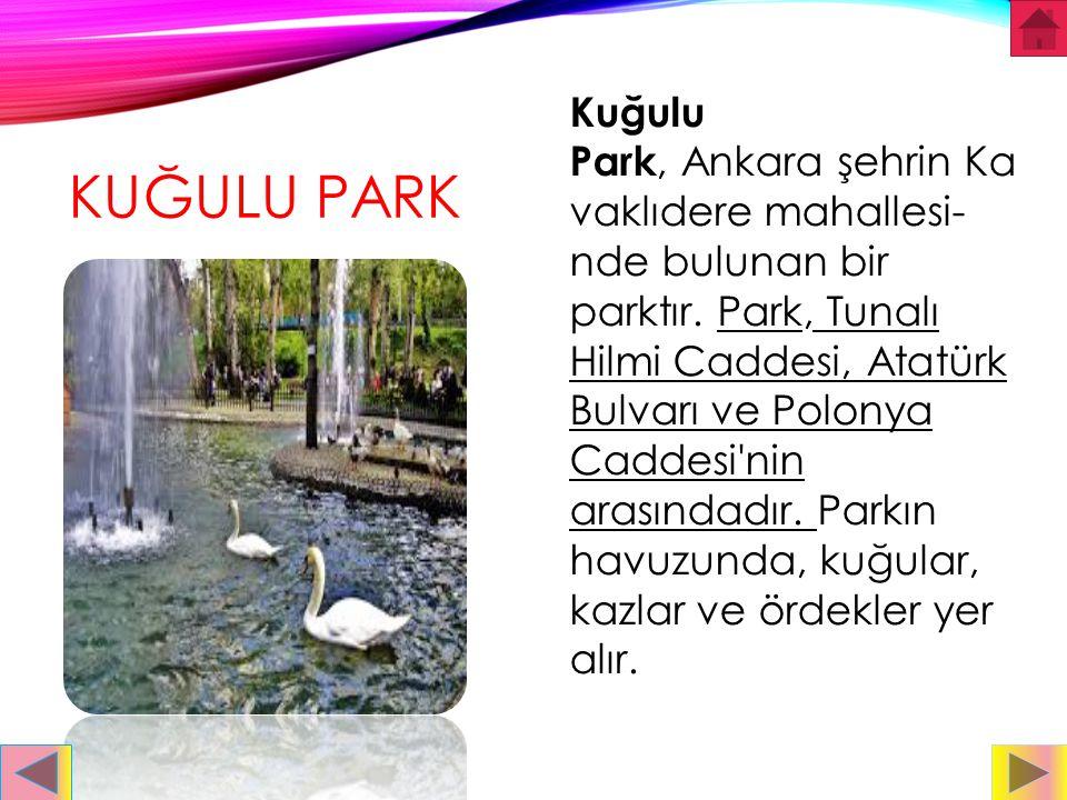 Kuğulu Park, Ankara şehrin Kavaklıdere mahallesi-nde bulunan bir parktır. Park, Tunalı Hilmi Caddesi, Atatürk Bulvarı ve Polonya Caddesi nin arasındadır. Parkın havuzunda, kuğular, kazlar ve ördekler yer alır.