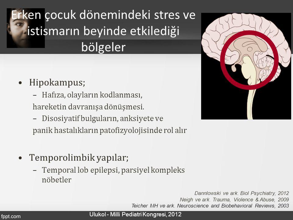 Erken çocuk dönemindeki stres ve istismarın beyinde etkilediği bölgeler