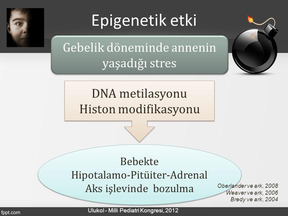 Epigenetik etki Gebelik döneminde annenin yaşadığı stres