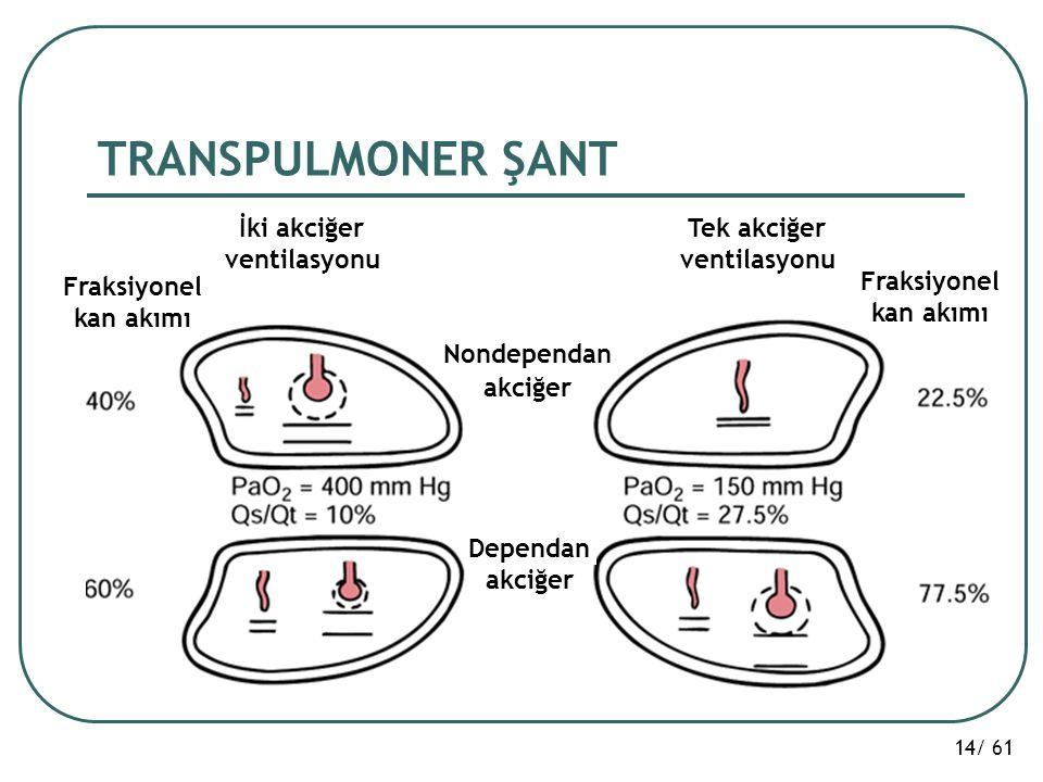 TRANSPULMONER ŞANT İki akciğer ventilasyonu Tek akciğer Fraksiyonel