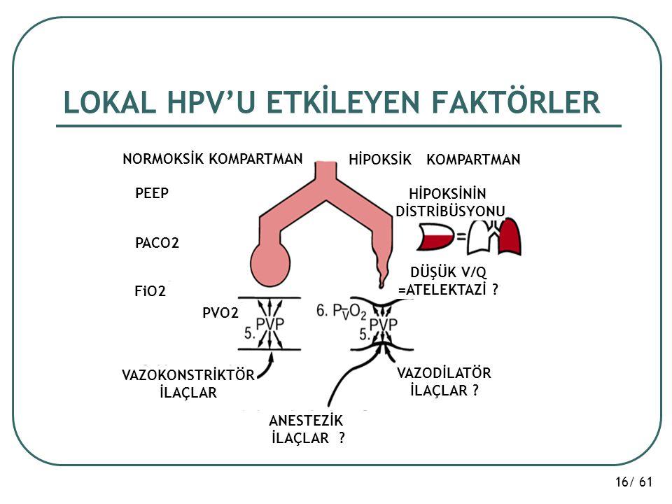 LOKAL HPV'U ETKİLEYEN FAKTÖRLER
