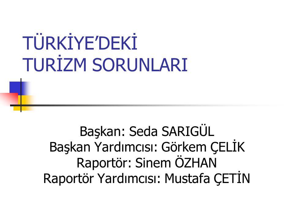 TÜRKİYE'DEKİ TURİZM SORUNLARI