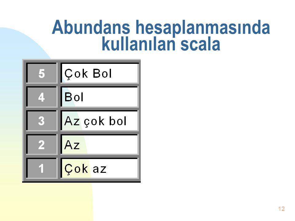 Abundans hesaplanmasında kullanılan scala