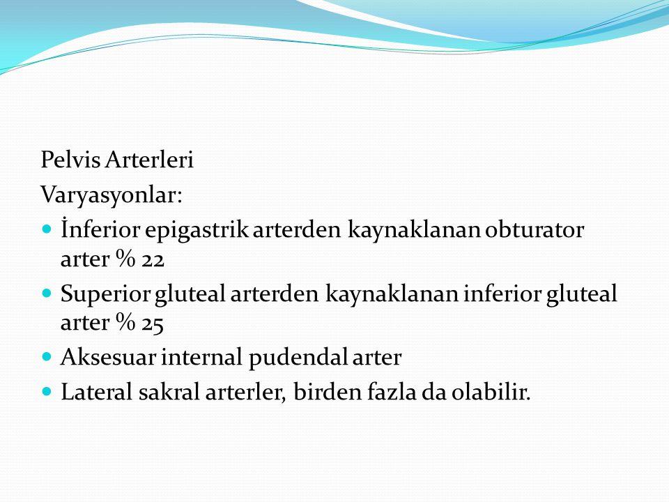 Pelvis Arterleri Varyasyonlar: İnferior epigastrik arterden kaynaklanan obturator arter % 22.