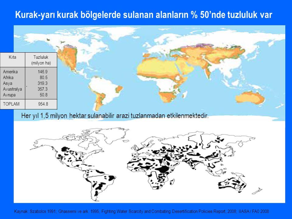 Kurak-yarı kurak bölgelerde sulanan alanların % 50'nde tuzluluk var