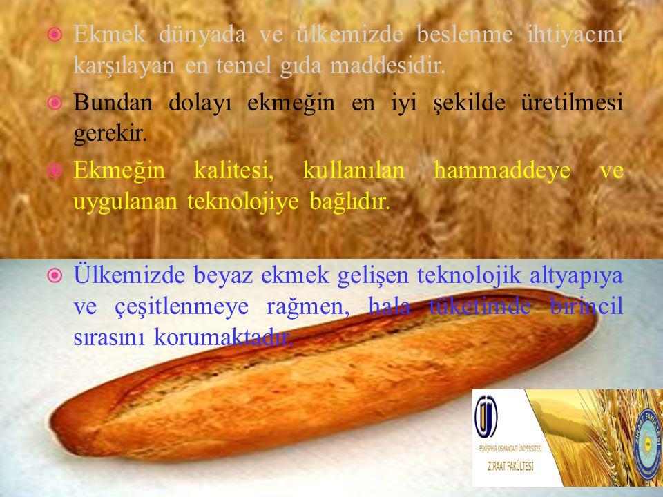 Ekmek dünyada ve ülkemizde beslenme ihtiyacını karşılayan en temel gıda maddesidir.