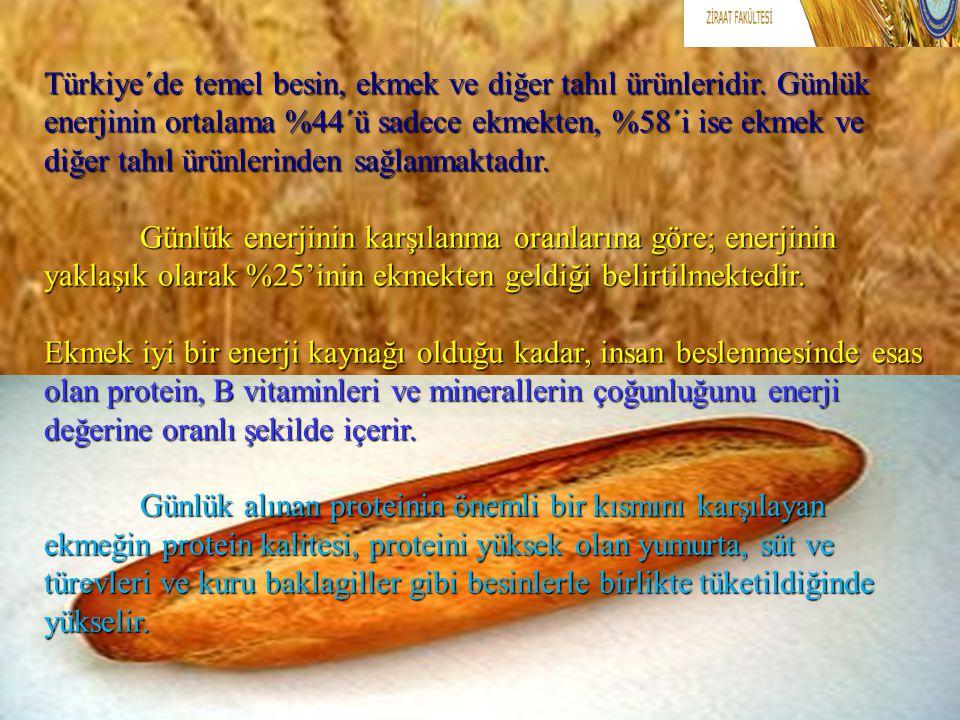 Türkiye´de temel besin, ekmek ve diğer tahıl ürünleridir