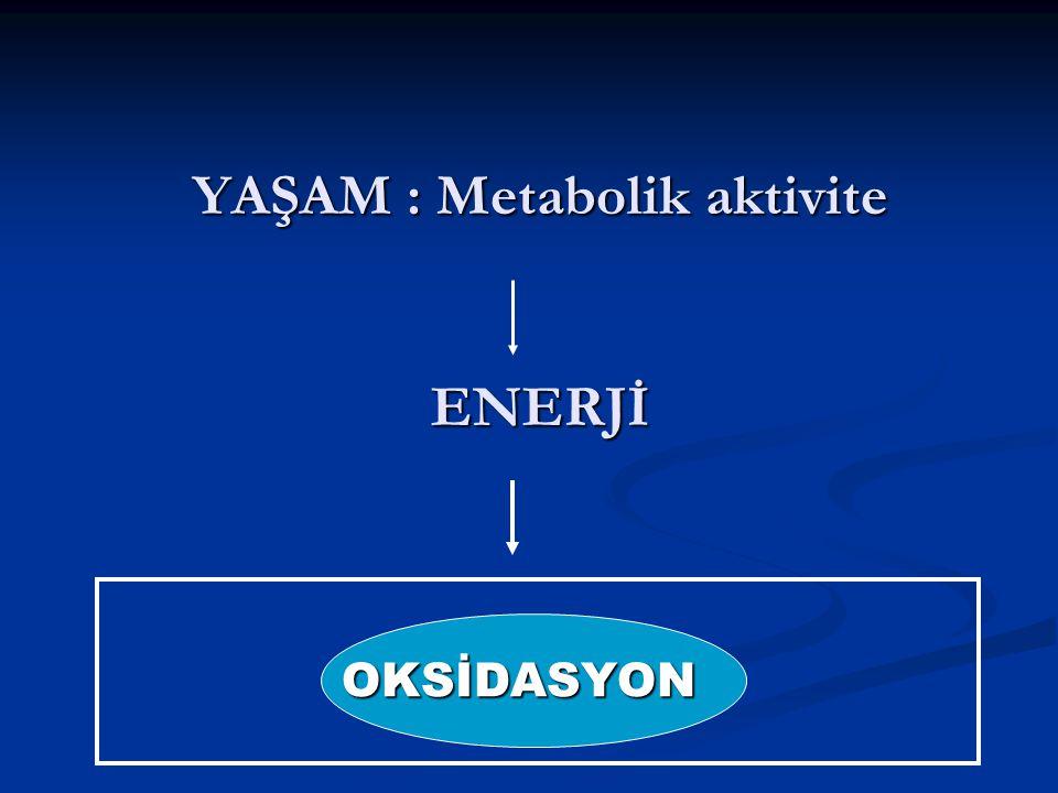 YAŞAM : Metabolik aktivite ENERJİ