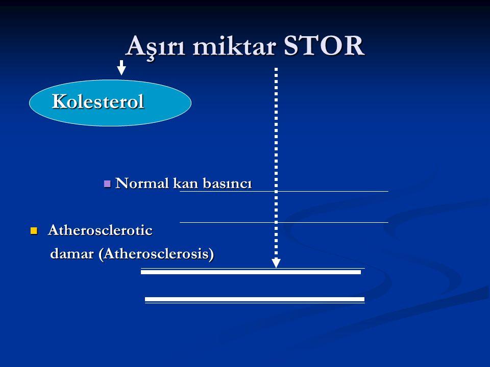 Aşırı miktar STOR Kolesterol Normal kan basıncı Atherosclerotic