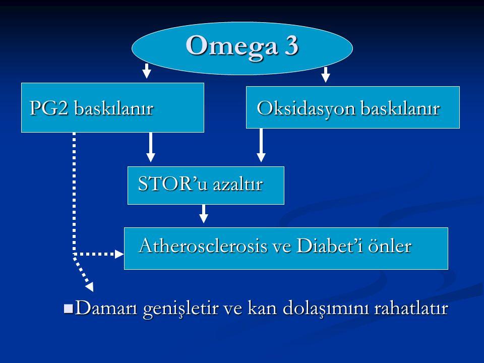 PG2 baskılanır Oksidasyon baskılanır