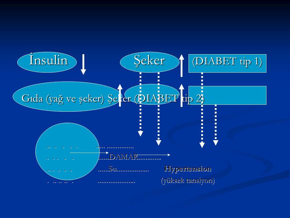 İnsulin Şeker (DIABET tip 1) Gıda (yağ ve şeker) Şeker (DIABET tip 2)
