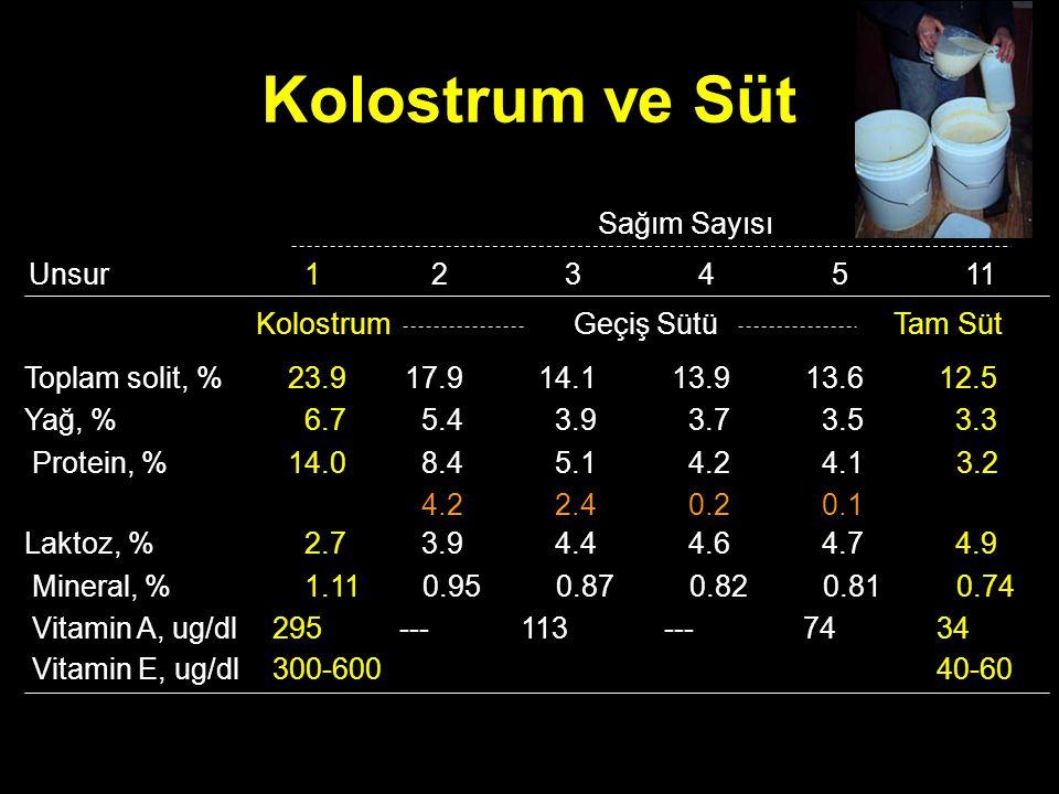 Kolostrum ve Süt Sağım Sayısı Unsur 1 2 Geçiş Sütü 17.9 5.4 8.4 4.2
