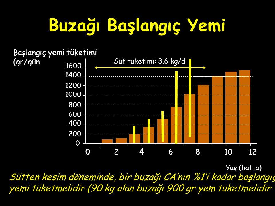 Buzağı Başlangıç Yemi Başlangıç yemi tüketimi. (gr/gün. Süt tüketimi: 3.6 kg/d. 1600. 1400. 1200.