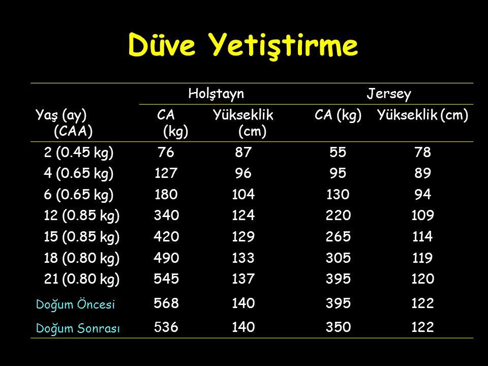 Düve Yetiştirme Holştayn Jersey Yaş (ay) (CAA) CA (kg) Yükseklik (cm)