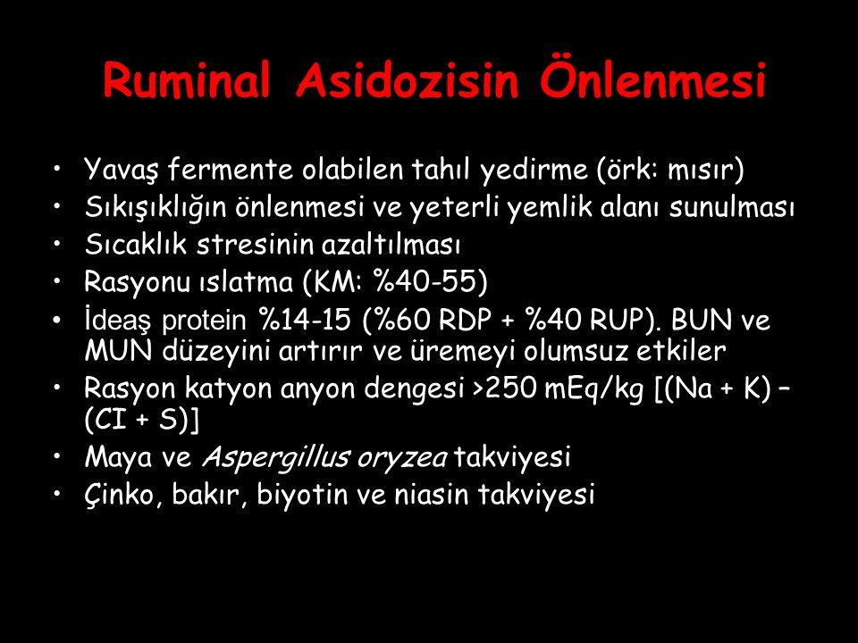 Ruminal Asidozisin Önlenmesi