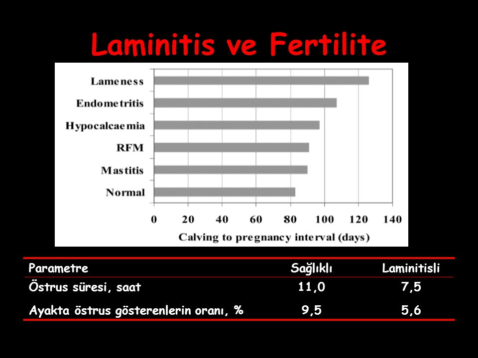 Laminitis ve Fertilite