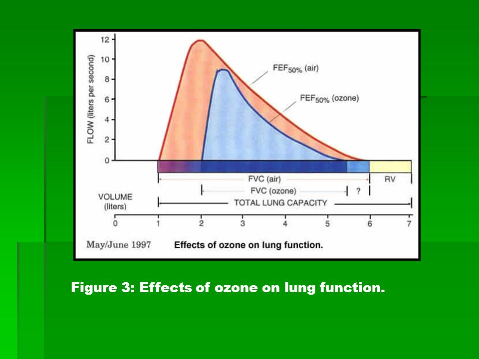 Figure 3: Effects of ozone on lung function.