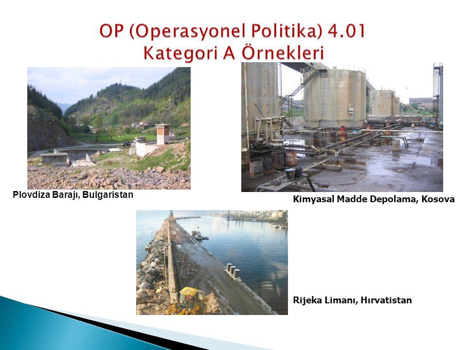 OP (Operasyonel Politika) 4.01 Kategori A Örnekleri