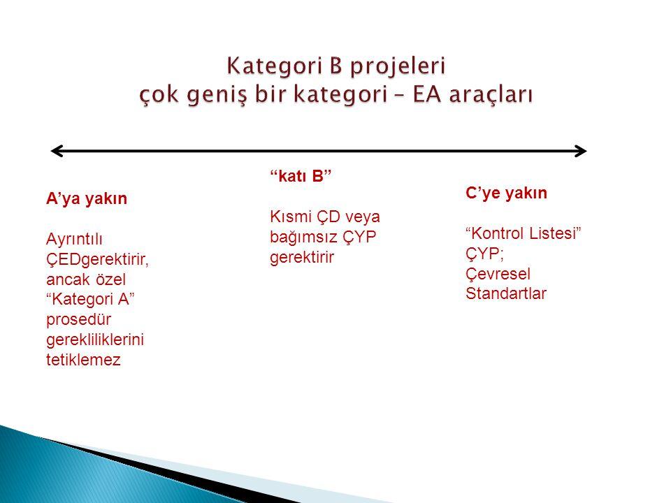 Kategori B projeleri çok geniş bir kategori – EA araçları