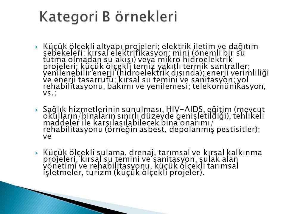 Kategori B örnekleri