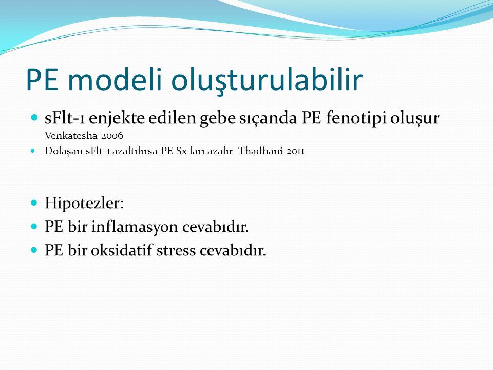 PE modeli oluşturulabilir