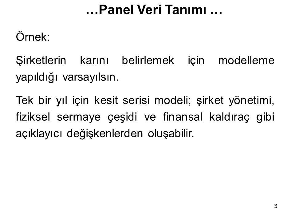 …Panel Veri Tanımı … Örnek: