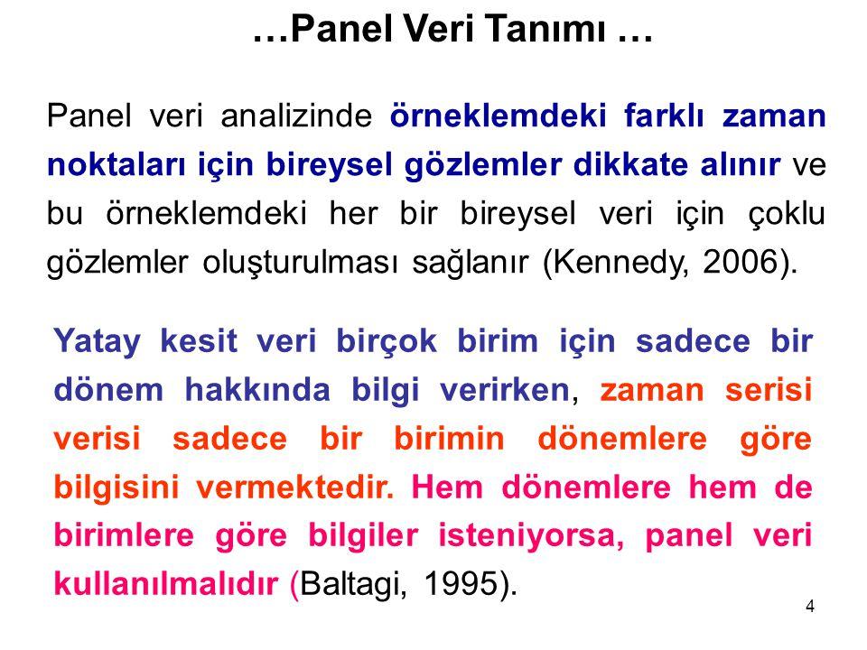 …Panel Veri Tanımı …